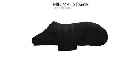 transport rug minimalist wingsandhalo